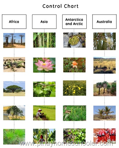 Plant Atlas Control Chart