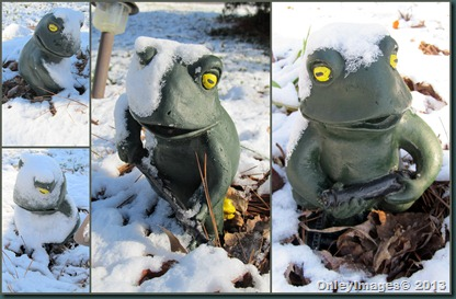snow garden frogs