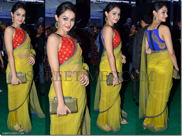 Andrea_Jeremiah_Green_Shimmer_Saree_IIFA_Awards