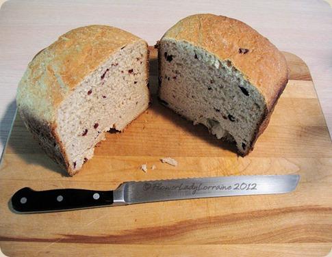 11-04-oatmeal-bread3