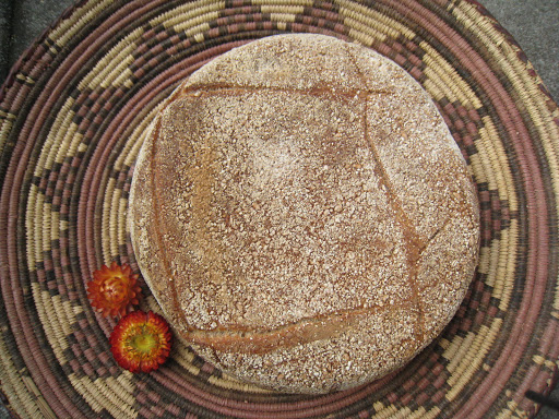 Hamelman's Whole-Wheat Levain after I scored the loaf I tried to put it into the preheated iron pot. Unfortunatly it fell down and turned around, that's why this loaf is double-scored, on the bottom and on the top ;).