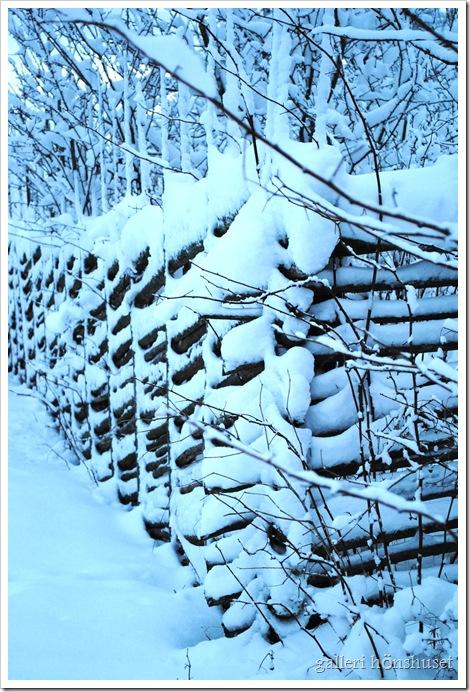 vinterbilder gården 019