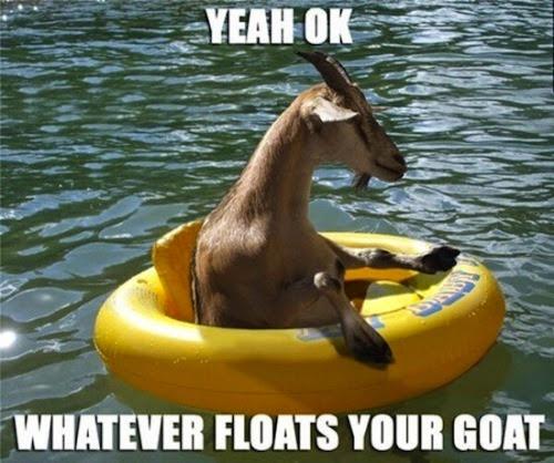 goat-pun-1