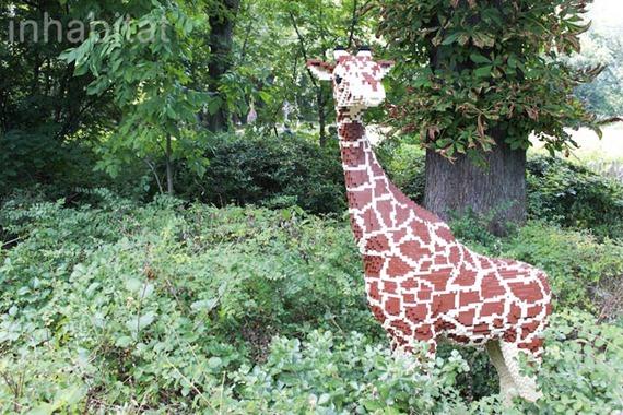 bronx-zoo-lego-giraffe