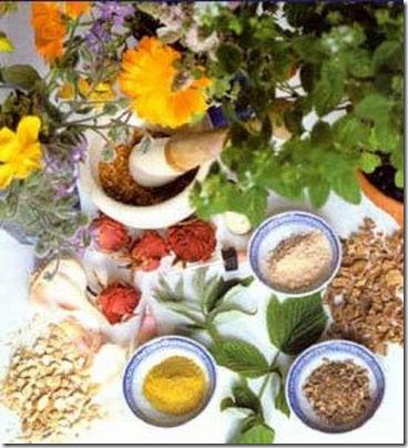 tratamientos homeopaticos