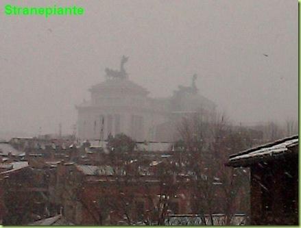 altare della patria neve roma