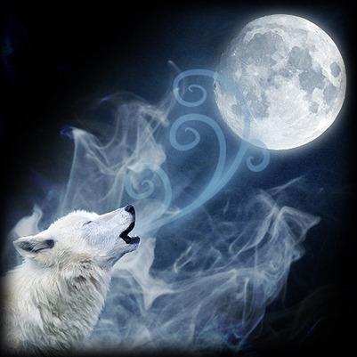 Fotos lobo aullando luna llena - Imagui