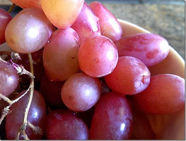 grapes-public-domain-pictures-1 (2299)