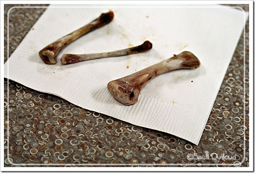 boneobservation
