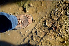 misstep in the mud
