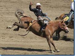 9447 Alberta Calgary - Calgary Stampede 100th Anniversary - Stampede Grandstand - Calgary Stampede Saddle Bronc Championship