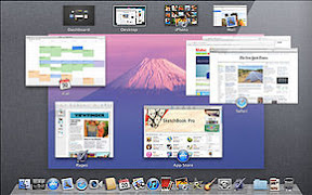 290px-Mac_OS_X_Lion_Preview_-_Mission_Control-2011-06-6-11-02.jpg