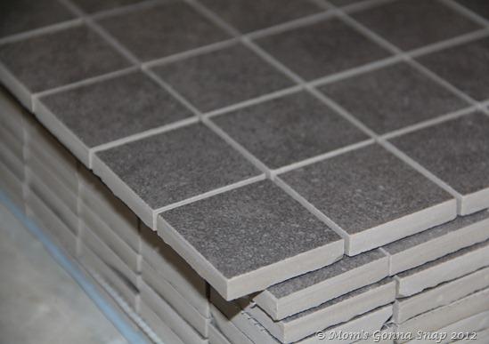 mom\'s gonna snap!: Tiling the Shower Floor