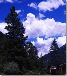 Colorado Summer 054