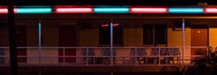 Neons-of-Florida---Sea-Jay-Motel-5