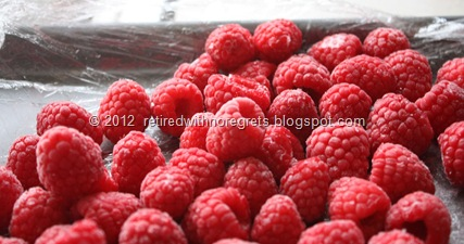 Driscoll's Raspberried - frozen
