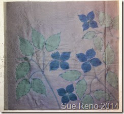 Kousa Dogwood, a work in progress by Sue Reno, Image 3