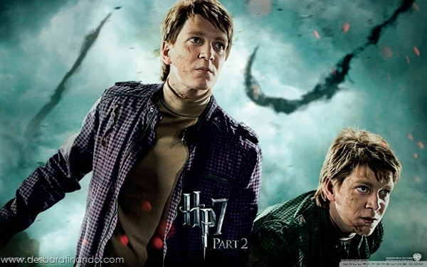 harry-potter-and-the-deathly-hallows-wallpapers-desbaratinando-reliqueas-da-morte (2)
