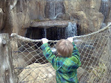 The kid loves waterfalls! Any time he heard one - yes, HEARD one - he made a beeline for it.