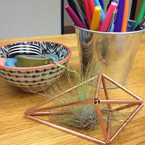 Mini Air Plant Holder