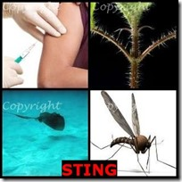 STING- 4 Pics 1 Word Answers 3 Letters