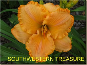 SOUTHWESTERN_TREASURE_f