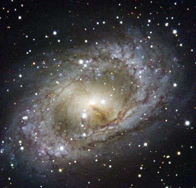 galáxia espiral NGC 6300