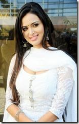 Meenakshi Dixit Hot