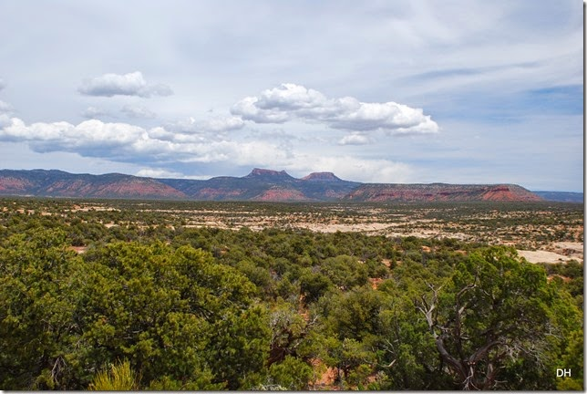 05-17-14 B Natural Bridges NM (132)
