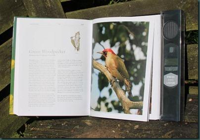 birdsong-book-open