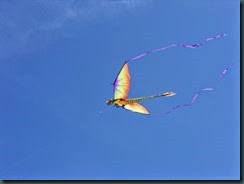 Kite Festival 2014 002