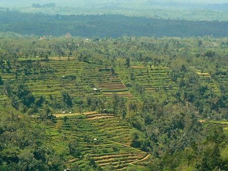 03. Bali.JPG
