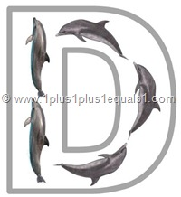 d dolphin