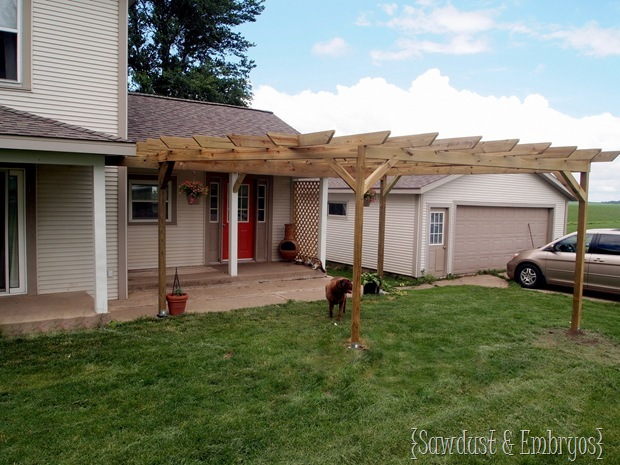 DIY Custom Pergola Construction {Sawdust and Embryos}