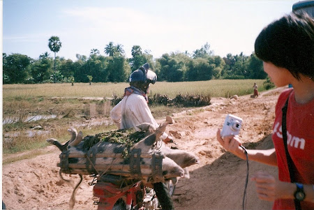 Angkow Wat pictures: With the pig on the motorbike