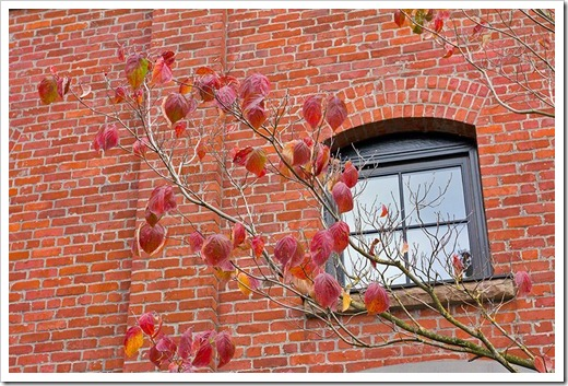 111104_Portland_Pearl_red_brick