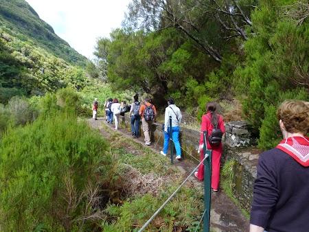 13. Levadas de Madeira.JPG