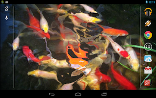 Screenshot of Baby-Koi: Water Effect