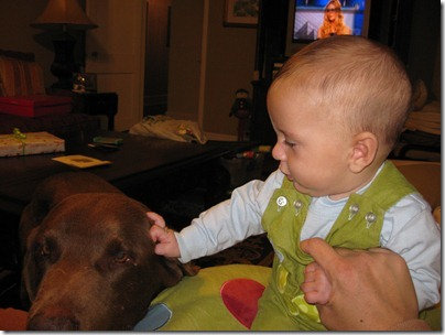 babies and their dogs 113012 (17)