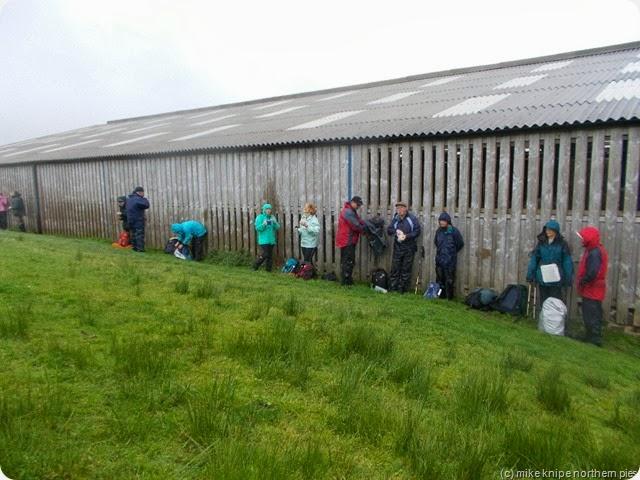 shed sheltering