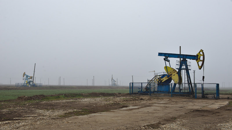 Petrolul tarii.