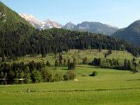 Pogled proti Pokljuškim goram
