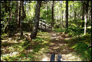 Campobello  3 SW trail loop 131