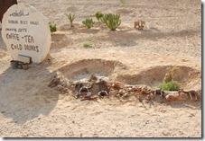 Oporrak 2011 - Jordania ,-  Castillos del desierto , 18 de Septiembre  22