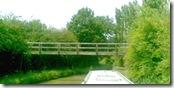 weddingbridge