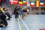 20130511-BMCN-Bullmastiff-Championship-Clubmatch-1493.jpg