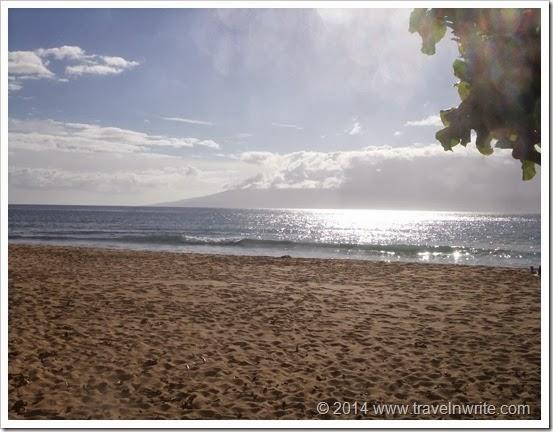 Maui2014SF 059