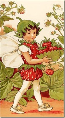 Michael Miller Strawberry Fairy Panel Multi_5.98