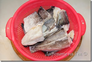 Риба треска осолена_Μπακαλιάρος παστός_5559