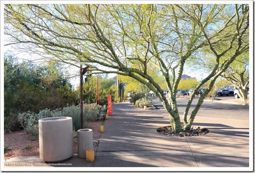 Desert Botanical Garden, Phoenix, Arizona: Part 1